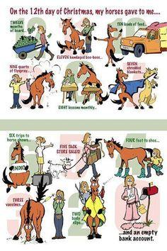 Wie wil er nog een EIGEN paard? Haha!!