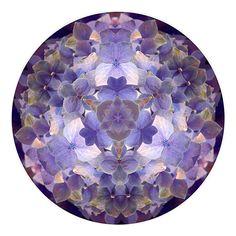 Abstract Photography, Flower Art, Fine Art Photography, Kaleidoscope, Hydrangea, Garden Decor, Mandala, Abstract Wall Decor, Purple