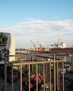 New Chairs - Acapulco für meinen kleinen Balkon ️ Happy Evening️P.S.: Es war ein feiner Dienstag - der kleine fiese Montagsbruder entpuppt sich doch manchmal als spannender Zeitgenosse - weiter so Herr Dienstag  #acapulcochair #balcony #balconyview #balkon #bloom #blooms #chair #decor #decoration #elbe #Fischmarkt #flower #flowers #goodnight #green #Hamburg #hh #home #homeinspo #instadaily #interieur #interior #mexico #mexicochair #myview #plant #plants #sunny #urbanjungle #wearehamburg