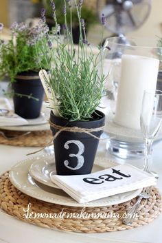 Potted Plants Wedding Centerpiece / http://www.himisspuff.com/potted-plants-wedding-decor-ideas/7/