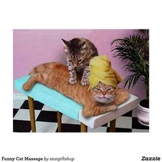 """""""Cat MassagePaws and Relax"""" by John Lund: Funny lol picture of one cat giving another a massage in a spa setting. The kitty receiving the therapy is laying on a massage table and there is a potted palm in the background. The Cat Massage Parlor Open M-F Cute Cats, Funny Cats, Funny Animals, Cute Animals, Funniest Animals, Fun Funny, Silly Cats, Crazy Funny, Wild Animals"""