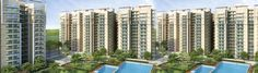 Amrapali Group launches the new project which have the best deals of 2/3/4 BHK Apartments with superior quality for Amrapali Verona Heights Noida Extension with vast amenities Call Now 9582810000 or http://www.amrapaliveronaheightsnoida.net/ visit us.