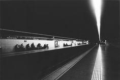 A l'occasion de la sortie du livre Mémoires d'un chien de Daido Moriyama aux éditions Delpire, la galerie du 13 rue de l'Abbaye inaugure aujourd'hui sa nouvelle exposition du célèbre photographe japonais.
