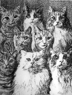 Eight Cats pen & ink drawing by Lisa Bell 1994. Available in print.
