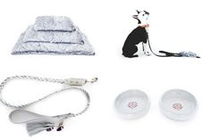 Modern Dog Beds, Collars, and Accessories from DOG & CROW - Dog Milk