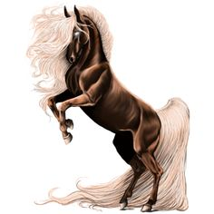 Вечер, Riding Horse Purebred Spanish Horse Dapple Grey - Howrse Most Beautiful Horses, All The Pretty Horses, Creature Drawings, Horse Drawings, Wilde Mustangs, Horse Wallpaper, Unicorn Fantasy, Unicorn Pictures, Horse World