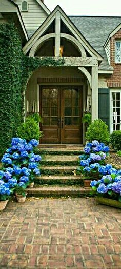 Hydrangea lined Craftsmen front door.