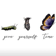 Give Yourself Time caterpillar to butterfly Yoga Beginners, Caterpillar Tattoo, How To Do Meditation, Butterfly Quotes, Butterfly Tattoos, Be Kind To Yourself, I Tattoo, Wrist Tattoos, Hebrew Tattoo
