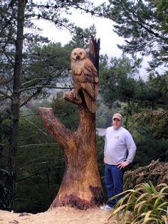 ECHO Chainsaw Carving Team Member Bob King carved this big owl in a customers stump in Northern, California Chainsaw Wood Carving, Wood Carving Art, Wood Art, Wood Carvings, Chain Saw Art, Wooden Statues, Tree Carving, Old Trees, Art Carved
