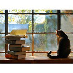 """Good friends, good books, and a sleepy conscience: this is the ideal life."" ~Mark Twain"