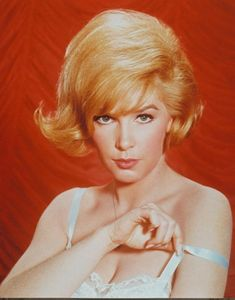 Stella Stevens autograph Stella Stevens (born played Gail Hendricks opposite a drunk, lecherous and old Dean Martin in the Matt Helm spy-spoof… Stella Stevens, Movie Market, Hollywood Heroines, Hollywood Actresses, Steven S, Classic Movie Stars, Dean Martin, Celebs, Celebrities