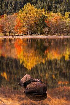 ~~Lubnaig Autumn ~ Autumn Forest, Loch Lubnaig, The Trossachs, Scotland, GB by Shuggie!!~~