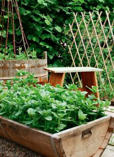 Fröken Gröns Blogg