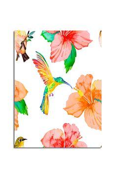 Koliber, Obraz na płótnie - Canvas