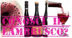 L'italiano con il vino: il Lambrusco
