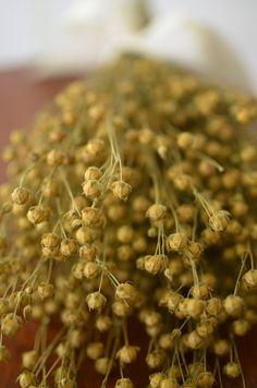 Boxwood Wreath Diy, Diy Wreath, Square Wreath, Flax Fiber, Flax Plant, Do It Yourself Wedding, The Fresh, Preserves, How To Dry Basil