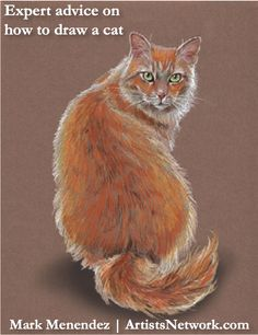 Great tips from Mark Menendez on how to draw a cat and other animals ~ ArtistsNetwork.com #drawing #art #coloredpencil