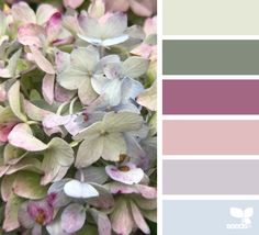 { flora hues } - https://www.design-seeds.com/in-nature/flora/flora-hues-49