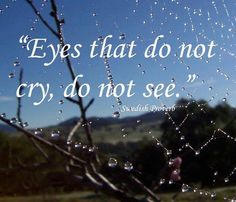 Eyes that do not cry, do not see. Swedish proverb