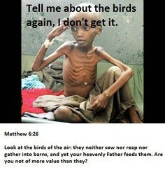So, God thinks birds are more important or more deserving of life than children are? Seriously? What kind of moral code to Christians claim to follow? It's immoral, not moral.