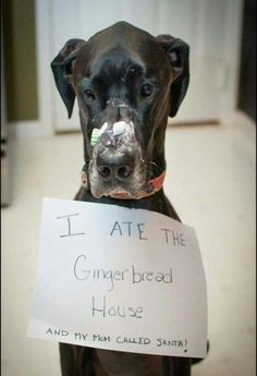 I ate the gingerbread house and my Mom called Santa!