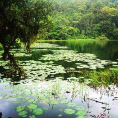 Laguna Hule. Alajuela, Costa Rica.