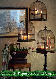 20 Lovely Repurposed Bird Cages ~
