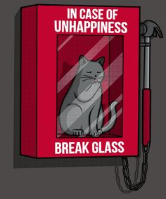 ⚠️break kitty cat glass ⚠️ 🤣🤣🤣🤣🥰🧶🐈 All life's problems seem to ease with fur baby love . Funny Cats, Funny Animals, Cute Animals, Crazy Cat Lady, Crazy Cats, I Love Cats, Cool Cats, Cat Comics, Cat Quotes