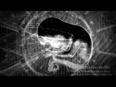 ABBILDUNG - Two-Sphere World - YouTube