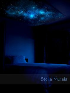 Glow in the Dark Star Ceiling Canopy Glow 5'3 x by StellaMurals