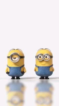 Funny Minion Videos, Minion Gif, Funny Minion Pictures, Minions Love, Minion Jokes, Funny Relatable Memes, Funny Jokes, Cute Minions Wallpaper, Cute Funny Babies