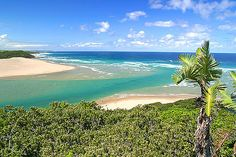 The river is usually brown from topsoil washed down with the rains, but in times of low-rainfall a spring high tide will wash clean sea water into the river mouth. River Mouth, Signal Hill, Top Soil, Marine Life, South Africa, Landscape Photography, Golf Courses, Tourism, Coast