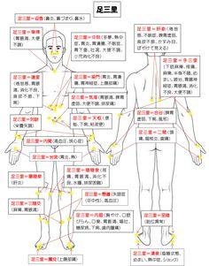 足三里 Home Health, Health Care, Health Fitness, Human Muscle Anatomy, Body Check, Natural Remedies For Anxiety, Body And Soul, Chinese Medicine, Reflexology