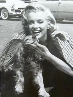 Marilyn Monroe with Cavalier King Charles Spaniel.hmmm, I wonder if given the era of this picture, maybe this could be a Cocker Spaniel? Note the size of the paws, a bit big for a Cavalier. Nonetheless, props to Marilyn for loving dogs! Marylin Monroe, Fotos Marilyn Monroe, Estilo Marilyn Monroe, Viejo Hollywood, Old Hollywood, Hollywood Actresses, Hollywood Glamour, King Charles Spaniel, Cavalier King Charles