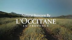 Natural skincare by L'OCCITANE en Provence.  Visit our website to learn more, or to find a store near you!  www.loccitane.com #loccitane and #repinforsweetskin