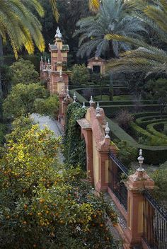 The gardens of Alcazar Palace, Seville - Spain.  The orange trees were blooming when we visited.