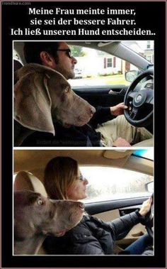 My wife always thinks that she's the better driver. I'll let our dog decide.