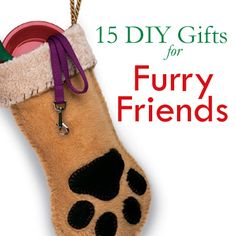 15 DIY gifts for your furry friends!