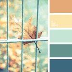 Mint, blue and orange colors of autemn