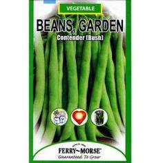 recipe: bush bean seeds home depot [9]