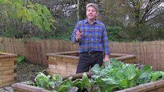 waist high raised bed garden - YouTube
