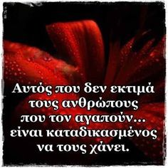 Greek Quotes, Forever Love, Wise Words, Life Is Good, Love Quotes, Jokes, Wisdom, Facts, Letters