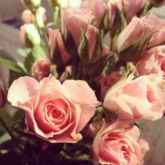 Des roses offertes par mon chéri et postées sur mon compte Instagram
