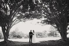 Beautiful wedding @ Opal Cove Resort by Moore Photography