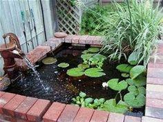Risultato immagine per above ground turtle ponds for backyards