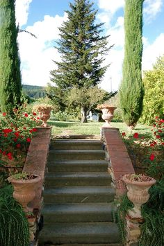 Gentle Colors and Clever Furnishing, a wide park with Lime trees, Olives, Magnolias and Roses. Surrounded by the beautiful Tuscan hills. Terracotta Floors, Beamed Ceilings, Spacious Bedrooms and Modern Bathrooms create a light, airy atmosphere. Private, yet within easy reach of nice restaurants and wineries - this is a perfect holiday home for those who love art, wine and food! #family #holidays #tuscany #italy #kids #travel
