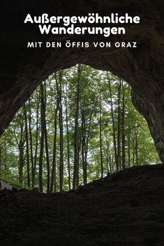 Lofoten, Outdoor Reisen, Hallstatt, Salzburg, Tricks, Traveling, Plants, Graz, Road Trip Destinations