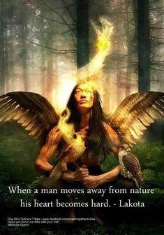 Lakota proverb