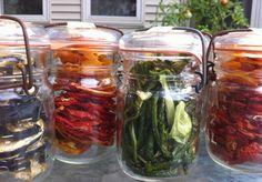 Storing harvest bounty: canning vs. dehydrating