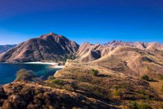 Komodo National Park is located between the islands of Sumbawa and Flores in Indonesia and consists of Komodo, Rinca, Padar and other smaller islands. Komodo National Park, Sailing Adventures, Lombok, Small Island, Islands, Bali, Water, Outdoor, Flowers